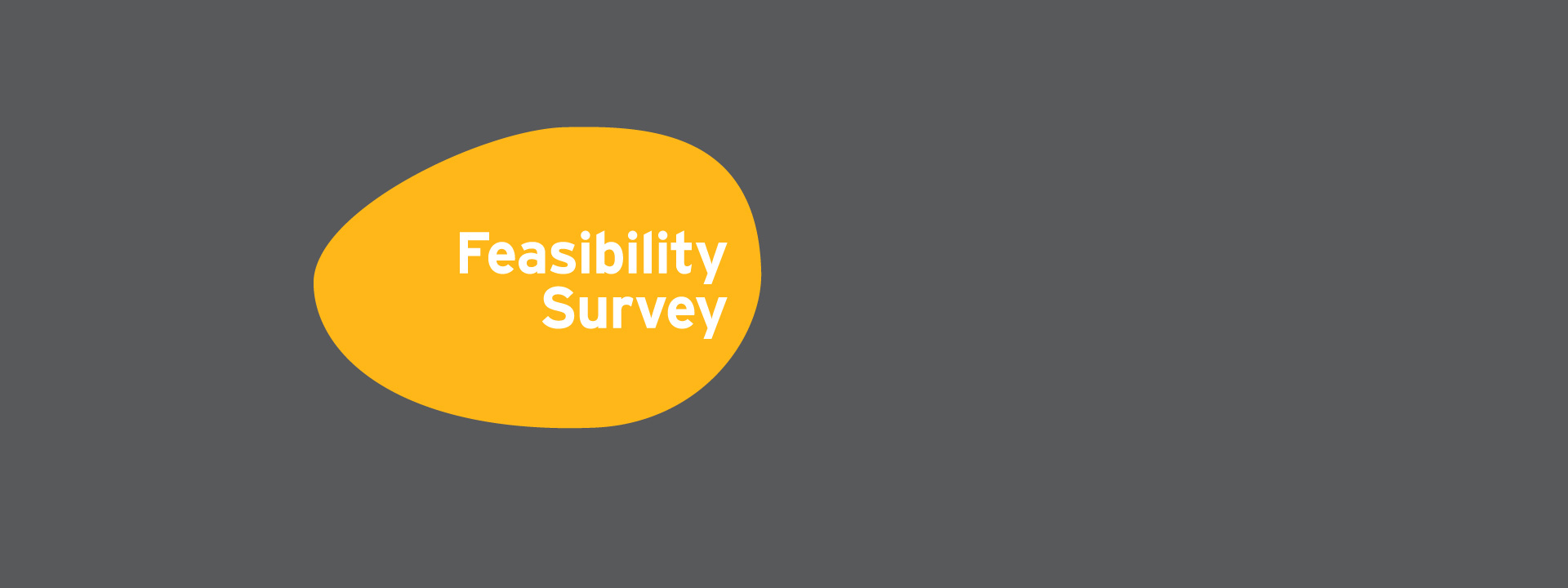 Feasibility Survey
